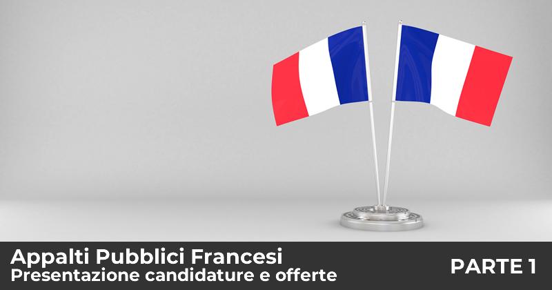 Appalti Pubblici Francesi: la presentazione delle candidature e delle offerte - Prima parte