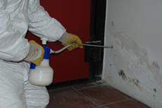 Barriera chimica pratica
