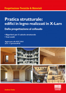 Pratica strutturale: edifici in legno realizzati in X-Lam