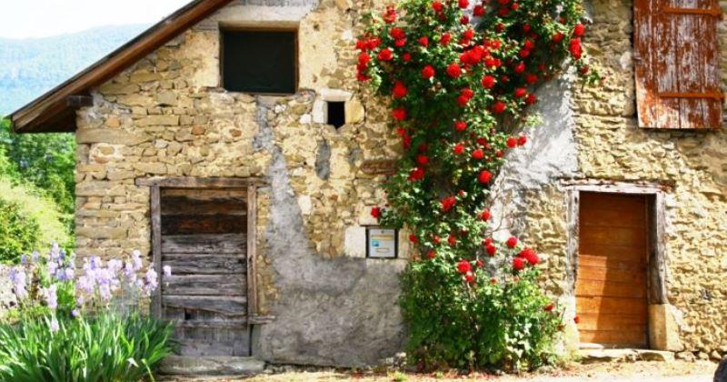 Indagine su rustici e casali in diverse zone d'Italia