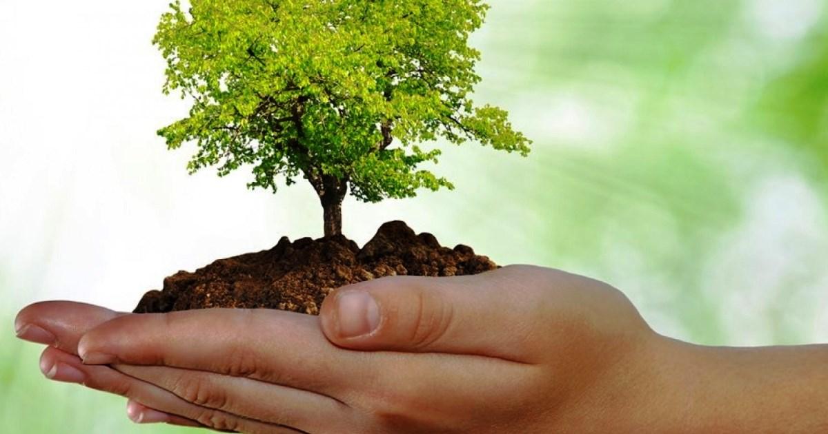 Nuovo Codice Appalti: Il ruolo dell'Ambiente secondo il Ministro Galletti