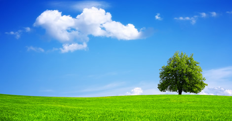 Autorizzazione unica ambientale (AUA): In Gazzetta il Modello semplificato