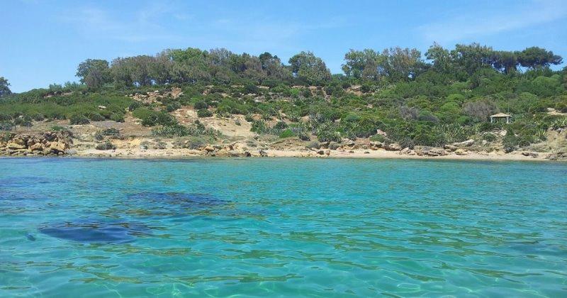 Bandiere blu 2016, In Italia 293 spiagge al top