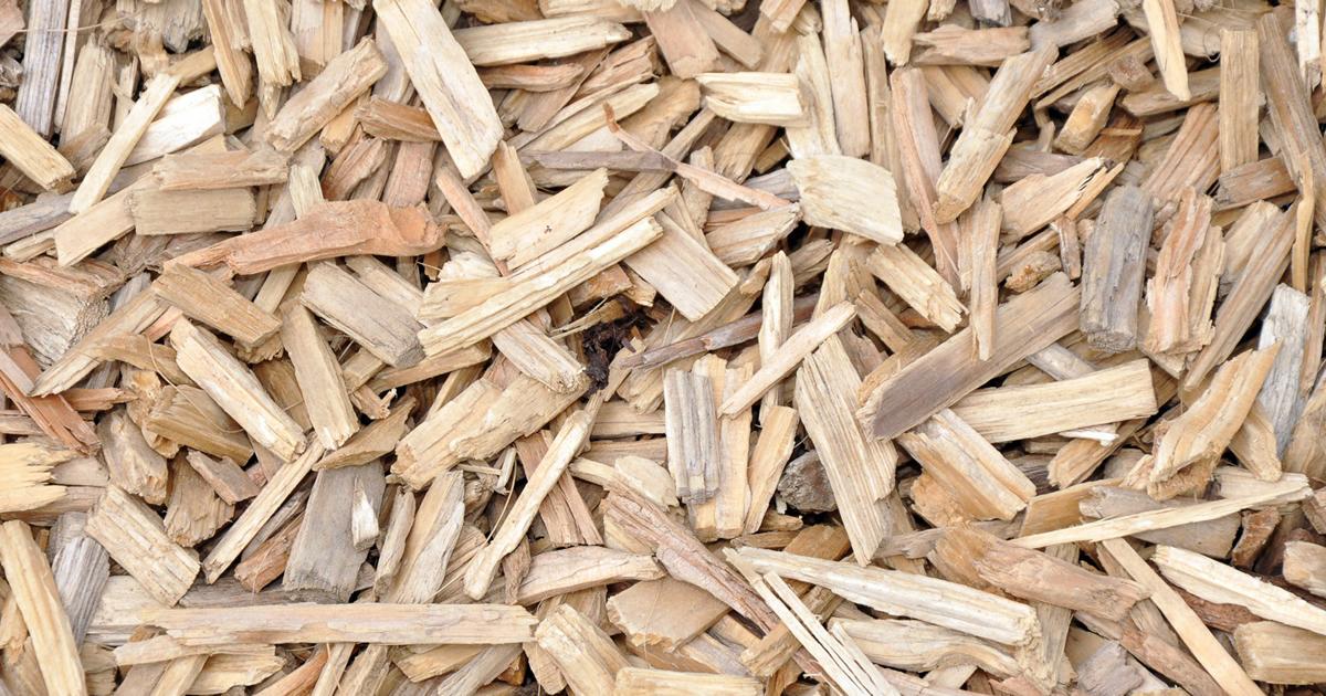 In Friuli Venezia Giulia contributi per la realizzazione di impianti energetici a biomassa legnosa