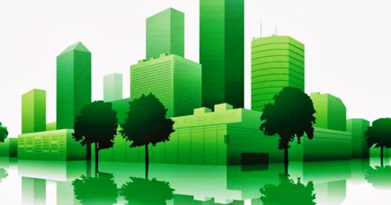 Codice dei contratti: Criteri ambientali minimi