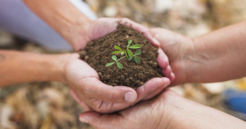 Regione Piemonte, approvati due ddl per la riqualificazione e recupero degli edifici e di contenimento del consumo di suolo