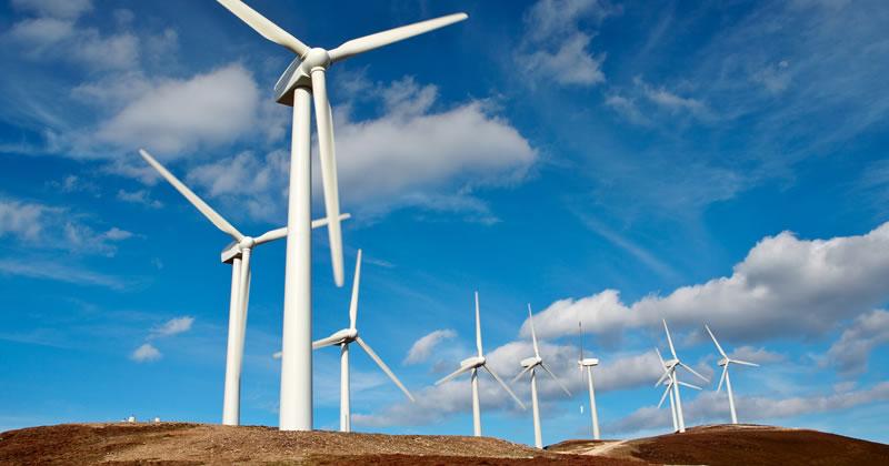 Valutazione di impatto ambientale (VIA) su un impianto di produzione di energia eolica: nuova sentenza del TAR