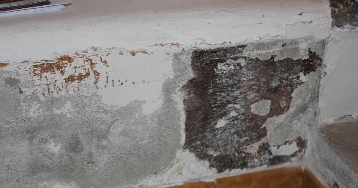 Risanamento delle murature umide e degradate