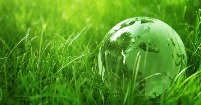 Regione Calabria: bando da 1,5 milioni di euro su sensibilizzazione ambientale