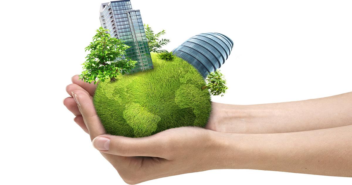 Friuli Venezia Giulia, riduzione di consumi di energia primaria negli edifici scolastici