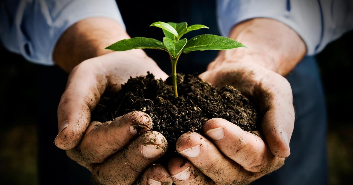 Lazio: 60 milioni per lo sviluppo rurale