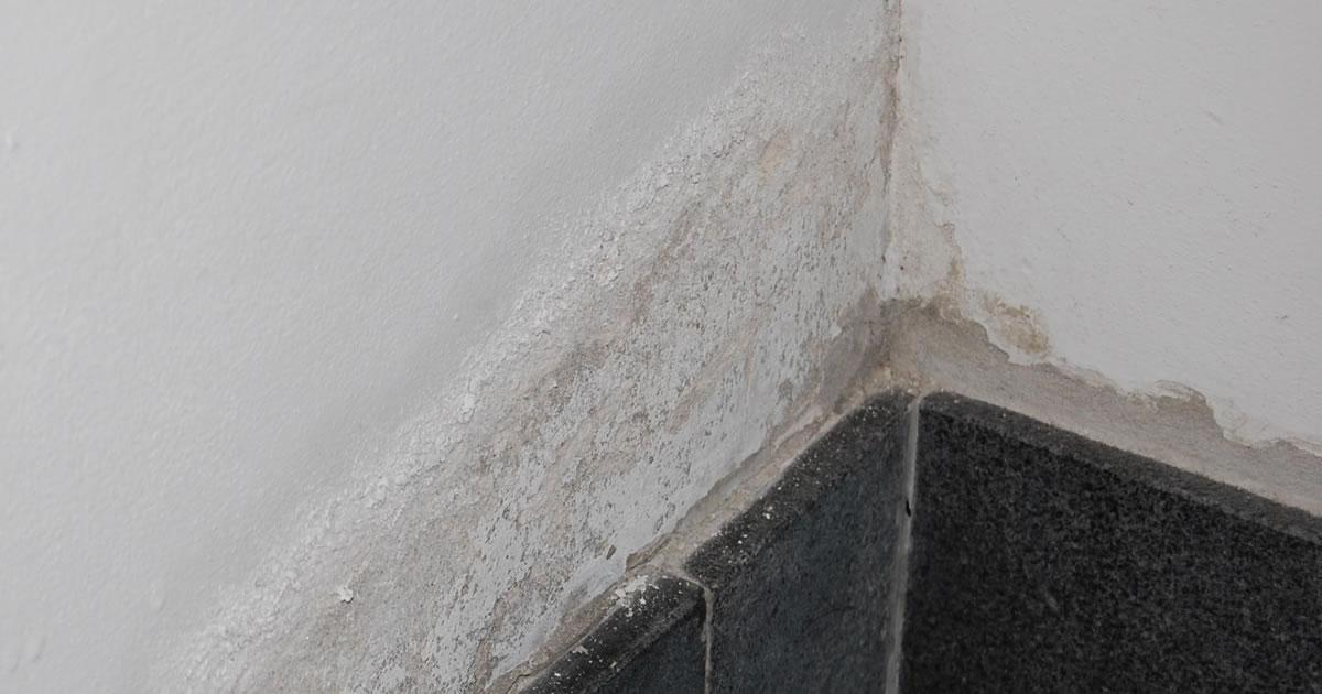 La soluzione pi semplice ed economica per deumidificare i muri di casa - Come deumidificare casa ...
