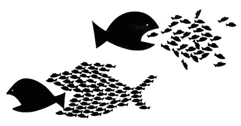 Equo compenso: uniti si vince